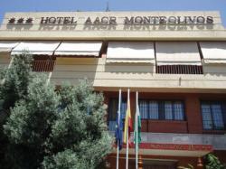Hotel Aacr Monteolivos,Sevilla (Sevilla)