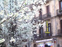 Pensión San Martín,San Sebastián (Guipúzcoa)