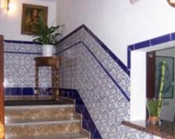 Hostal Alicia,San Pedro de Alcántara (Málaga)