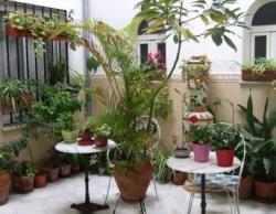 Hostal Alcazar,Córdoba (Córdoba)