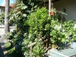 Hostal Residencia Blest Gana,Viña Del Mar (Valparaiso)