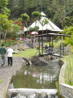 Ecovita Organic Boutique Lodge & Farm,Pallatanga (Chimborazo)