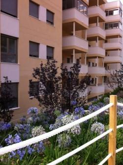 Apartamentos de Sol,Alicante (Alicante)