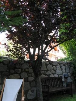 Besiberri,Arties (Lleida)