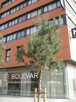 Hotel Bulevar Burgos,Burgos (Burgos)