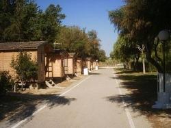Bungalows-Camping La Rana Verde,Chiclana  de la Frontera (Cádiz)