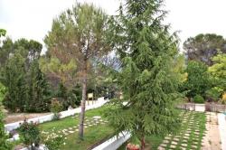 Hospederia de Montaña Morciguillinas,Cortijos Nuevos (Jaen)