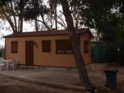 Camping Las Palmeras,Crevillente (Alicante)