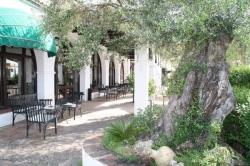 Hotel Las Truchas,El Bosque (Cádiz)