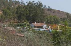 Los Bermejales,Firgas (Las Palmas)