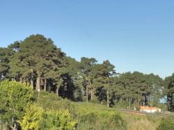 Pensión Roque Faro,Garafia (La Palma)