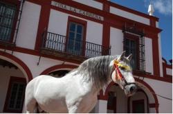 La Carreña,Jerez de la Frontera (Cádiz)