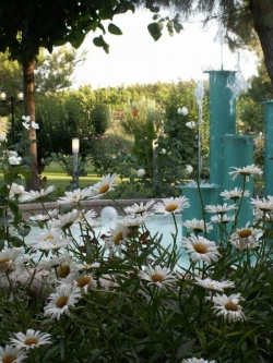 Hotel Jardins del Segrià,Lleida (Lleida)