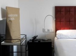 Hotel Chic & Basic Mayerling,Madrid (Madrid)