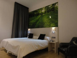 Hostal Olmedo,Madrid (Madrid)