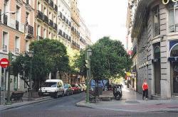 Albergue Ole Internacional Hostel,Madrid (Madrid)