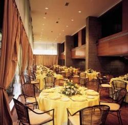 Hotel NH Eurobuilding,Madrid (Madrid)