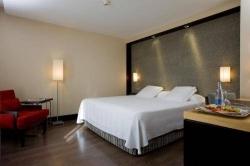 Hotel NH Lagasca,Madrid (Madrid)