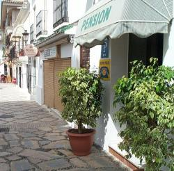 Pensión La Malagueña,Estepona (Malaga)