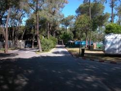 Camping La Buganvilla,Marbella (Málaga)