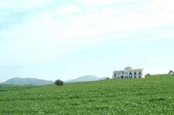 Arriadh Hotel,Ronda (Malaga)