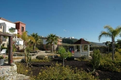 Finca Vista Bonita,San miguel de abona (Tenerife)