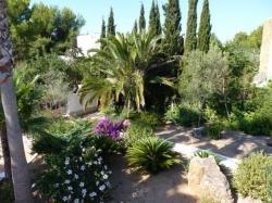La Palmera Ibiza,Santa Eulalia del Río (Ibiza)