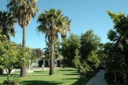 Hotel La Codorniz,Tarifa (Cádiz)