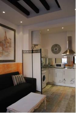 Apartamentos Cardenal Tavera,Toledo (Toledo)