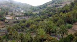 Pensión Amparo Las Hayas,Valle gran Rey (La Gomera)