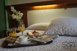 Hotel Saja