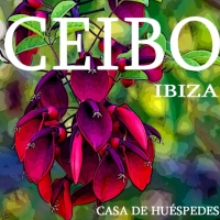Hostal Ceibo Ibiza