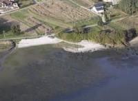 Playa Lóbrigo