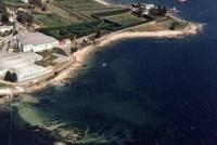 Playa Piquita