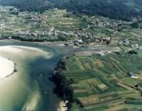 Playa Navaliños