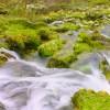 Parque Natural de Calares del Río Mundo y de la Sima