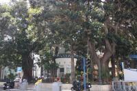 Plaza del Portal de Elche