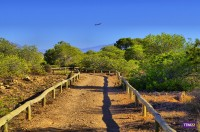 Paraje Natural Municipal del Clot de Galvany