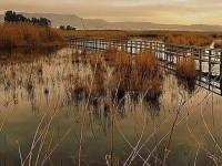 Parque Natural Protegido de El Hondo