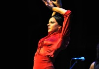 Tablao Flamenco Los Lunares