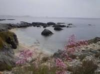 Playa Cabezo Negro