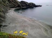 Playa Cala Cristal