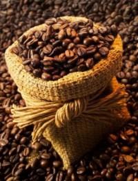 Cafeter�a Pilo�a