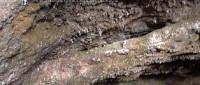 Cueva de la Riera