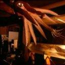 Aula Museo del Mar de Luarca