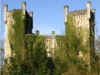 Castillo del Priorio o de Las Caldas