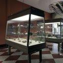 Museo de Geología de Extremadura