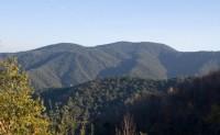 Parque Natural de Montnegre i el Corredor