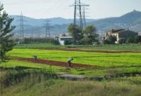 Reserva Natural Agrario del Delta del Bajo Llobregat
