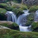 Paraje Natural de las Hoces del Río Purón
